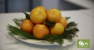 Египет готов заменить турецкие фрукты и овощи на российском рынке