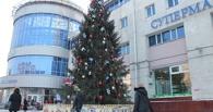 Мэрия Омска наградит Кокорина за новогоднюю ель за 4 миллиона