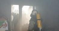 В Омске из горящей квартиры спасли 6 детей