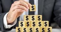 Экс-преподавателя ОмГАУ объявили в розыск за создание финансовой пирамиды
