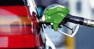 В Омске сохраняются самые низкие потребительские цены на бензин