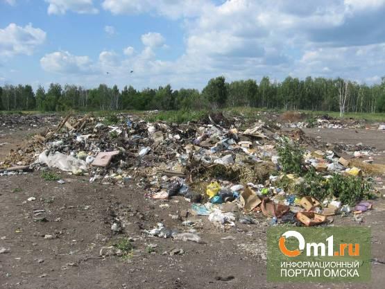 Омским многодетным семьям не дадут селиться в поселке Степном