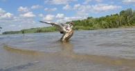 Сброшенные в Казахстане нечистоты размыло водой, пока они плыли до Омска