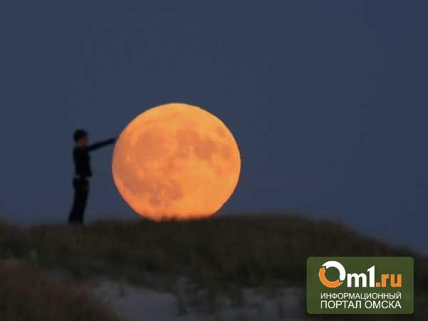 Омичи чаще всего ищут в интернете Луну, «Галактику» и «Планеты»