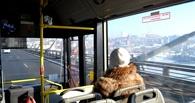 Автобусы из Омска в Чукреевку будут ходить чаще