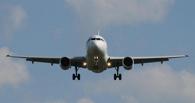 Из-за жалобы омича столичного дебошира оштрафовали на 1000 рублей за «хамское» поведение в самолете