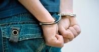В Омской области школьника судили за 10 преступлений