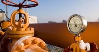 В Омской области за 109 млн рублей продают газодобывающее предприятие