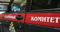 В Омске пенсионера убил друг его сына за обвинения в тунеядстве