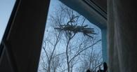 Неизвестный омич выбросил елку с балкона, теперь она рискует упасть на прохожих