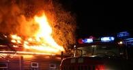 Мать и сын погибли при пожаре в Омской области