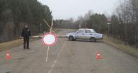 Правительство опубликовало список затопленных дорог в Омской области