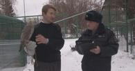 Иностранец контрабандой пытался вывезти из Омской области за рубеж краснокнижных птиц