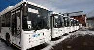 В Омской области отменили все пригородные, областные и международные автобусные рейсы