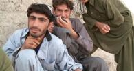 Под Омском задержали и посадили в местную колонию двух граждан Афганистана