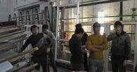 Из Омска депортировали 10 узбеков-гастарбайтеров, делавших пластиковые окна