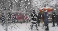 Погода на неделю в Омске: мокрый снег, гололед и туман
