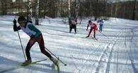 В омской «Птичьей гавани» стартовал лыжный сезон