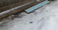 В Омской области нашли преступника по следу из конфет на снегу