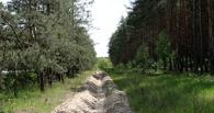 В Омской области начали готовиться к лесным пожарам