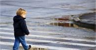 В Омске грузовая «Газель» сбила пятилетнего ребенка