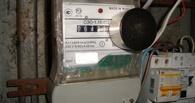 В Омске требуют закрыть сайты, торгующие магнитами для электросчетчиков