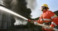 Чаще всего пожары в Омске случаются в Центральном округе