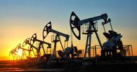 «Дно пока не достигнуто, но уже близко». Цена на нефть обвалилась до одиннадцатилетнего минимума