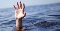 В Омской области во время купания в реке Омь утонула женщина