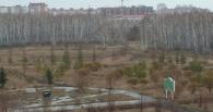 В парке 300-летия Омска обнаружили труп новорожденного