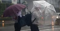 В Японии из-за тайфуна эвакуированы более 450 тысяч человек