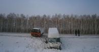 На трассе в Омской области микроавтобус врезался в рефрижератор