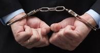 В Омске арестовали бывшего проректора по капитальному строительству ОмГУ