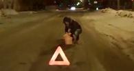 Омичи сняли на видео «Дорожную фею»