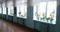 В Омске восьмилетнему ребенку в школе упал на голову плафон