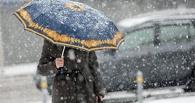 Апрель в Омске начнется с мокрого снега и дождя