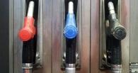 Пиво в бак: изобретена замена бензину из отходов хмельного напитка