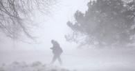 Погода на неделю в Омске: гололед и снежная буря