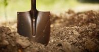 В Омской области молодой парень убил соседа лопатой