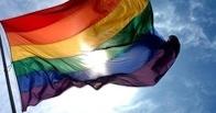 Голландия готова предоставить убежище жертвам гомофобии из России