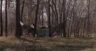 Бездомных из палаточного городка в омском Парке Победы выгнали