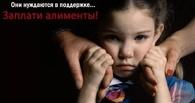В Омске и области числится около 13 000 алиментщиков
