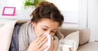 В Омской области официально объявлена эпидемия гриппа