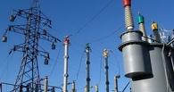 Кот оставил без электричества 25 тысяч жителей Крыма