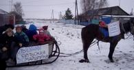«Это не шутка — сельская маршрутка»: в Омской области устроили акцию протеста с запряженной лошадью