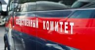 Родители убитой в Москве девочки: няня была хорошим специалистом