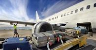 В повреждении самолета багажной тележкой в Омске обвинили ленивых грузчиков