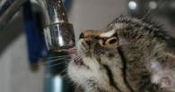 Сразу в трех округах Омска отключат холодную воду