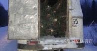Сезон открыт: в Омской области задержали первых «черных лесорубов» с елями и пихтами