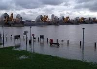Река Темза вышла из берегов и затопила дома в Лондоне